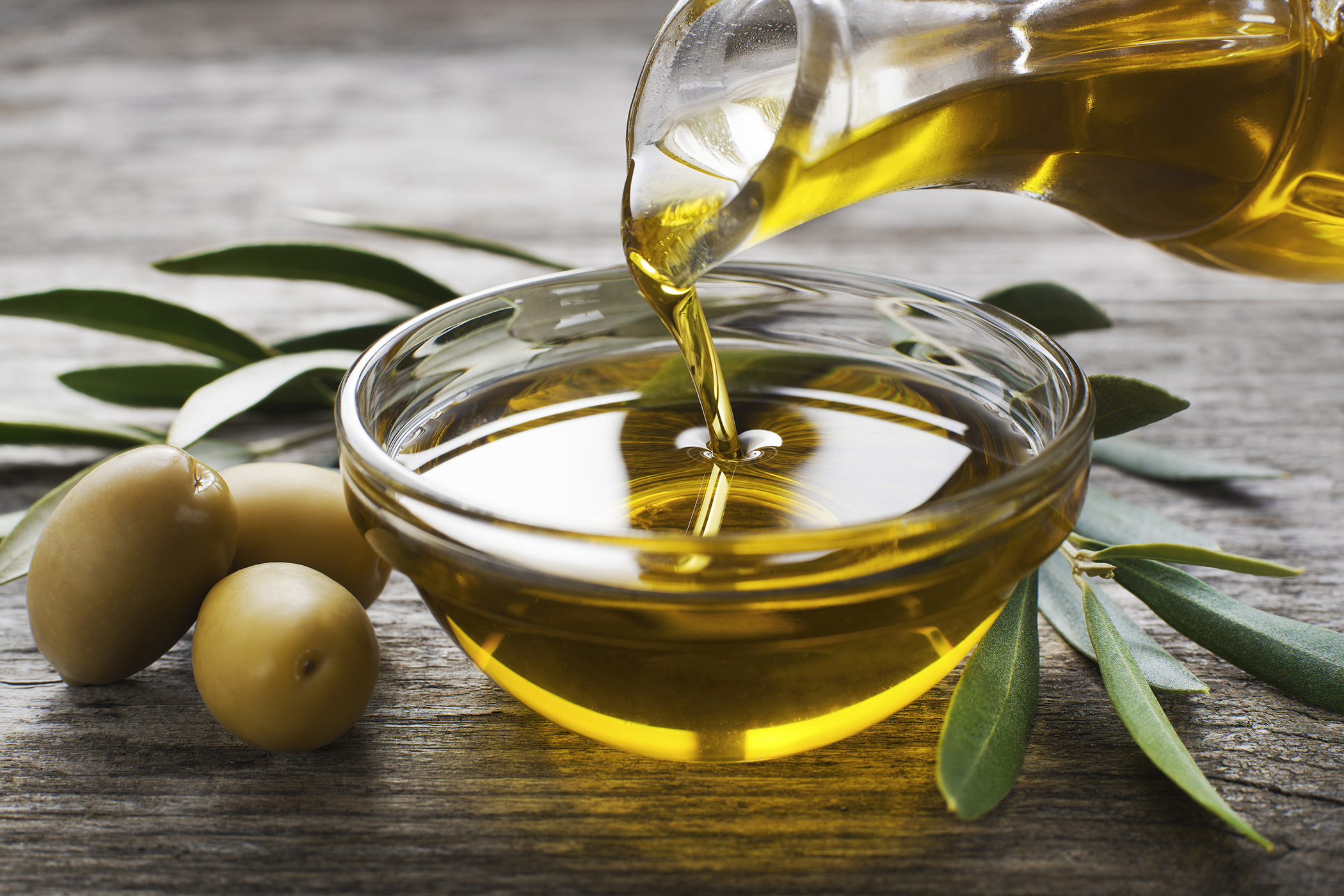 Olive Oil Allergy in Cats