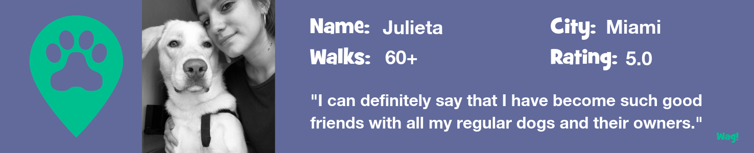 Julieta: A Miami Dog Walker's Story