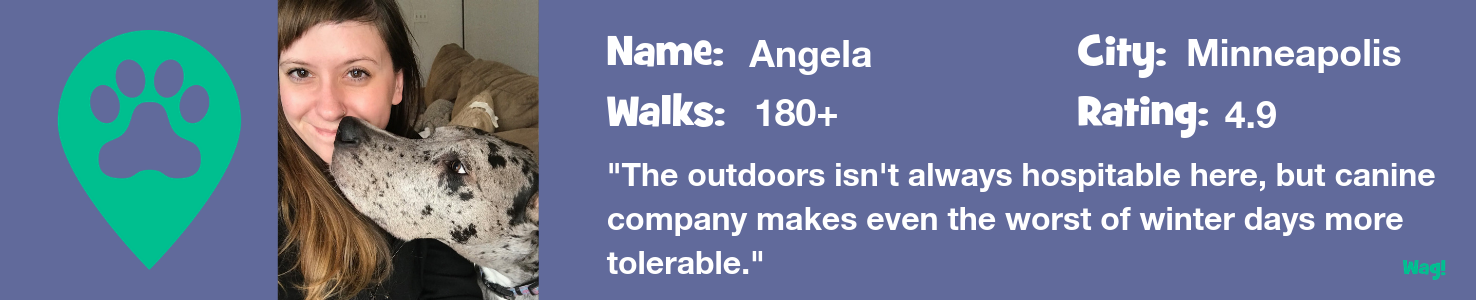 Angela: A Minneapolis Dog Walker's Story