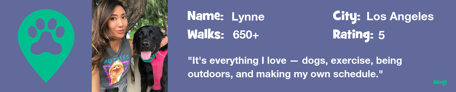 Lynne: A Los Angeles Dog Walker's Story