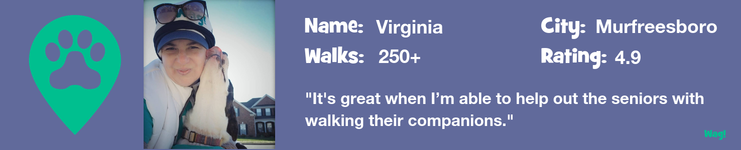 Virginia: A Tennessee Dog Walker's Story
