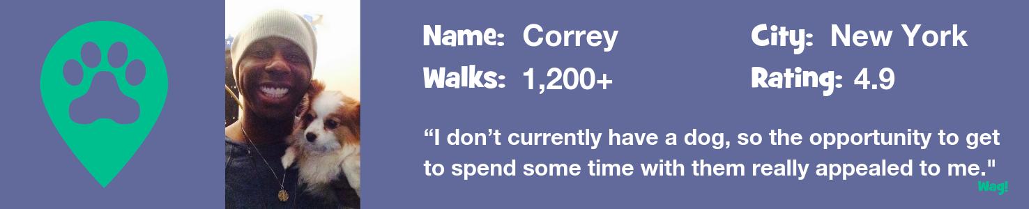 Correy — A New York Dog Walker's Story
