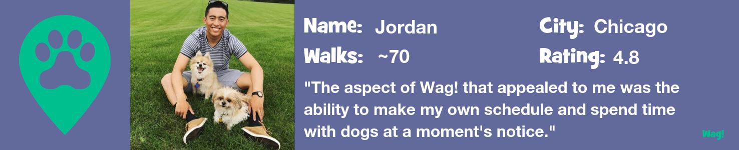 Jordan - A Chicago Dog Walker's Story
