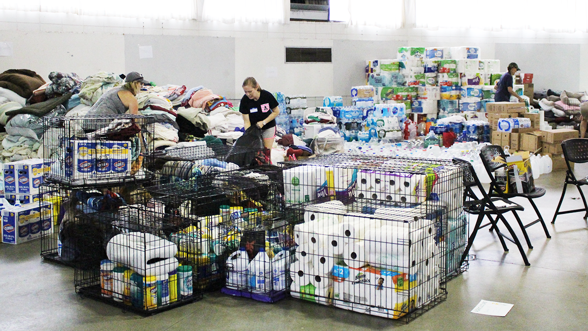 Your Donations Pay Off With Hurricane Florence Pet Rescues