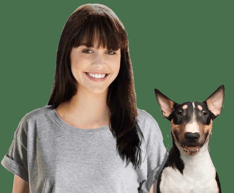 Best dog boarders in fairbanks ak wag dog boarders in fairbanks solutioingenieria Gallery